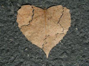 לשחרר מהלב את הכאב