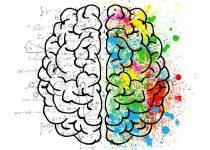 תרגול מוח ימין