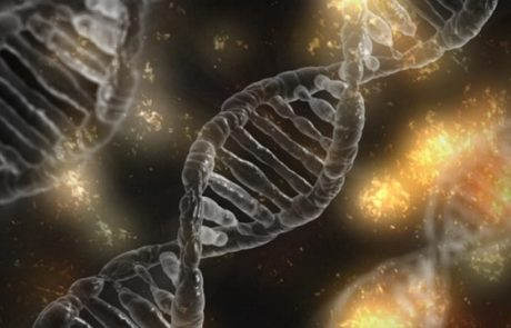 הפעלת צופני ה DNA – אני הנני מי שאני