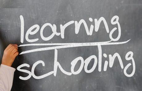 אשליה ועצמאות החינוך