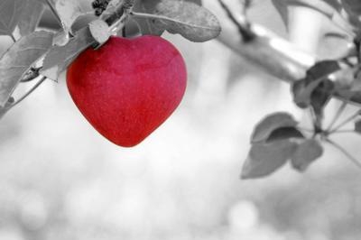 כולנו רוצים אהבה